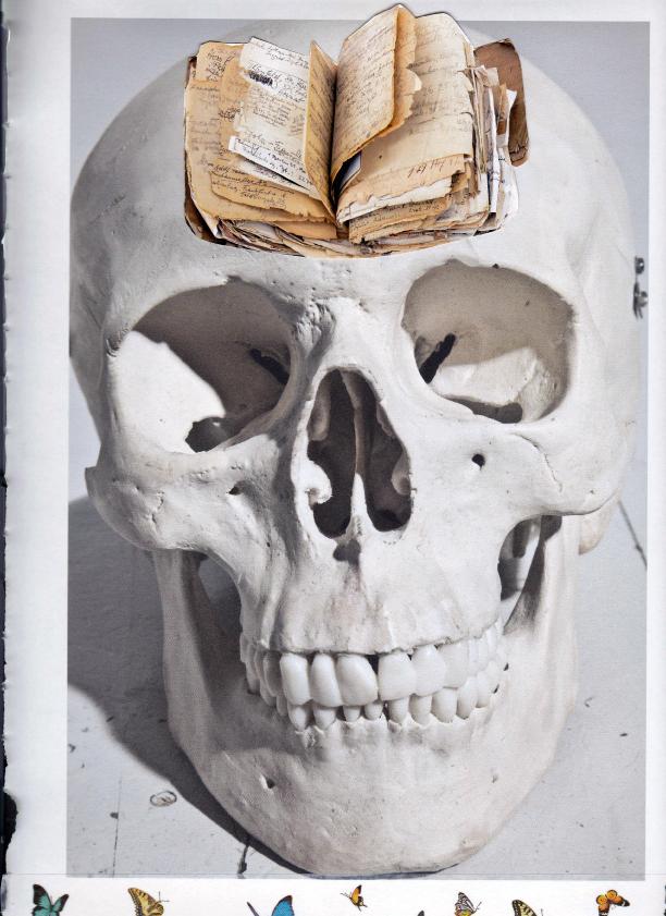 Kollage: Totenkopf mit Buch und Schmetterlingen